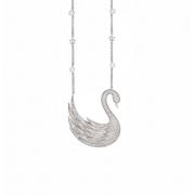 Magic Swan
